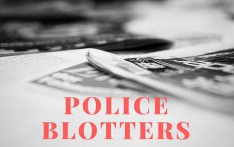 Pelham Manor police blotter: June 17-23