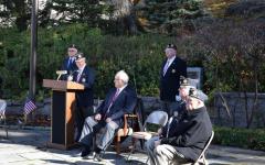 Pelham Veterans Day commemoration: slideshow