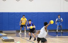 Foto Feature: Pelham Together dodgeball tournament raises more than $4,000 for ALS